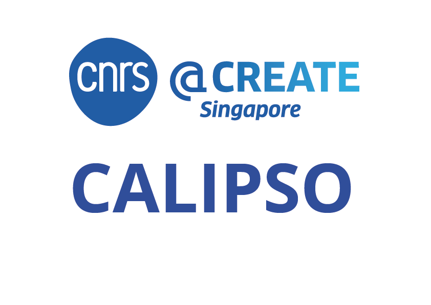 Intra-CREATE Engineering and Health. Selected project: CALIPSO